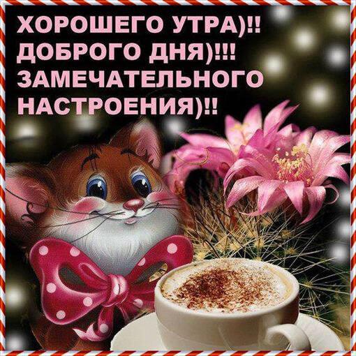 Картинки с Добрым утром, хорошего дня и настроения