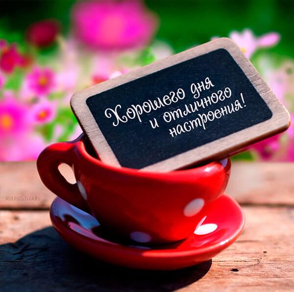Красивые картинки доброе утро, хорошего дня и настроения
