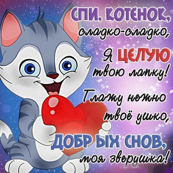 Спокойной ночи котенок - картинка прикольная