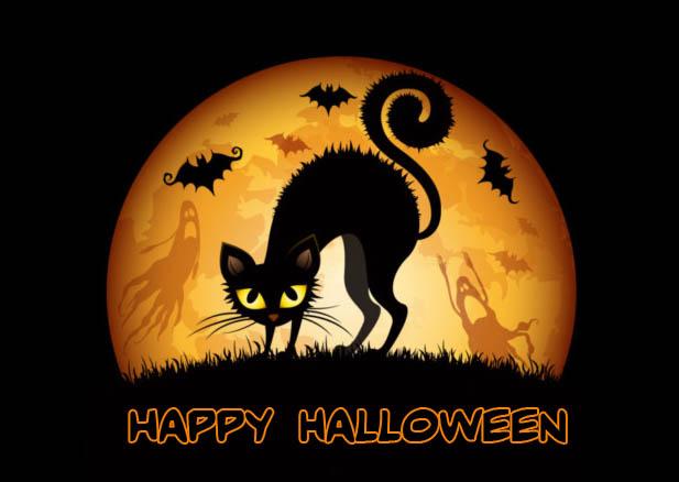 Happy Halloween - картинки с черной кошкой