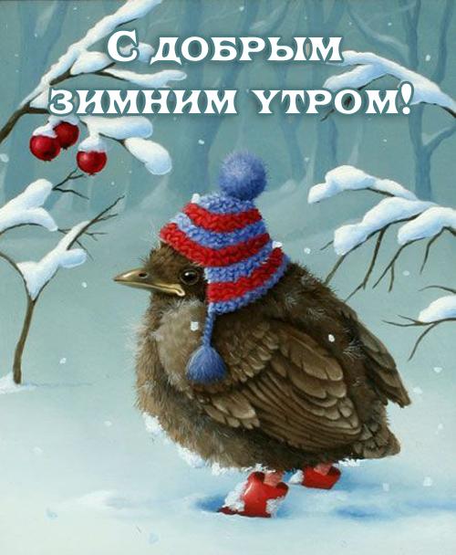 С добрым зимним утром картинки красивые