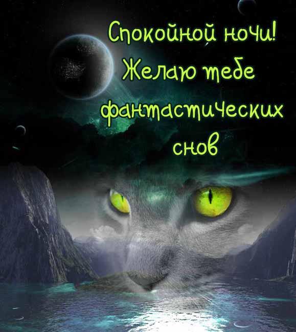 Спокойной ночи хороших снов картинки бесплатно