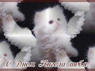 Поздравления с Днем ангела бесплатно