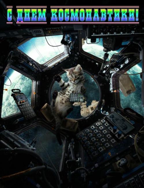 Прикольные картинки ко Дню космонавтики скачать