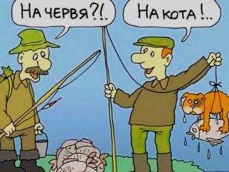 Смешные анекдоты про рыбалку и рыбаков