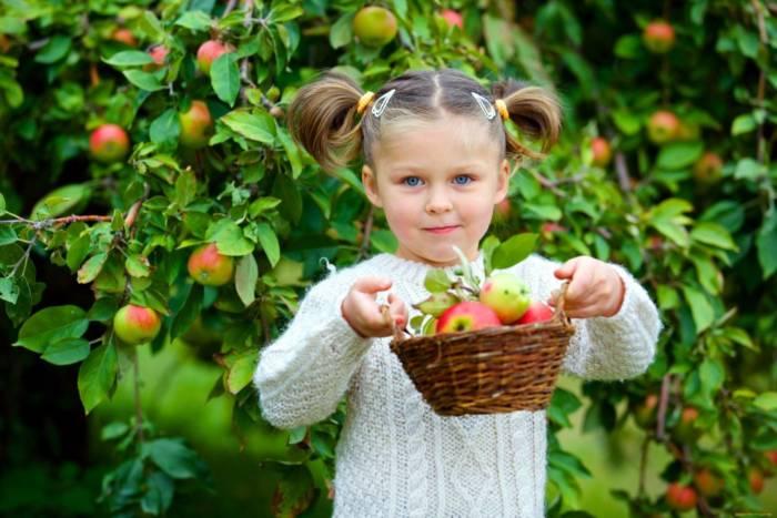 Какого числа Яблочный Спас в 2020 году