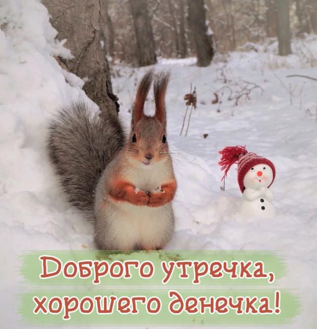 Доброго зимнего утра и хорошего дня