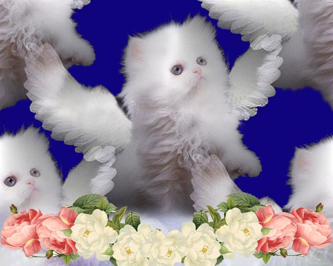 С Днем ангела Ольги - самые красивые открытки бесплатно
