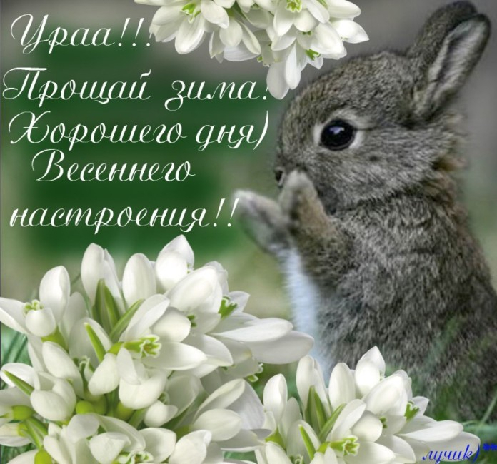 Картинки с Первым днем весны бесплатно