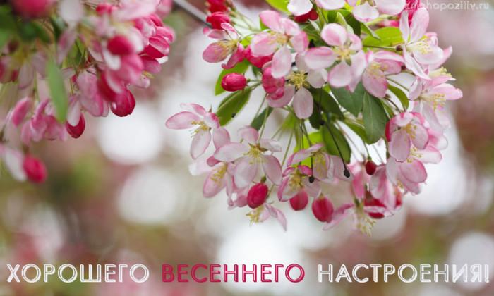 Красивые картинки хорошего настроения весной