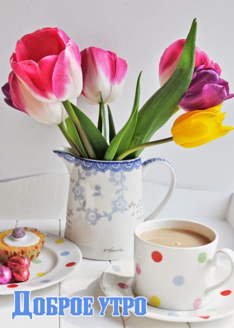 Картинки весенние с добрым утром и накрытым столом на завтрак