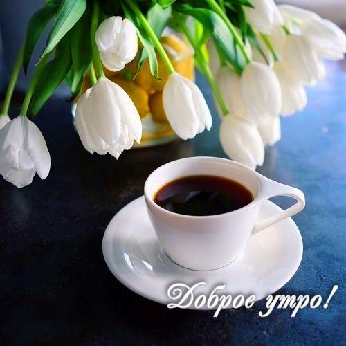 Весенние пожелания доброго утра картинки скачать