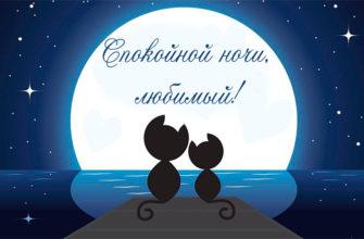 Сокойной ночи любимому пожелания
