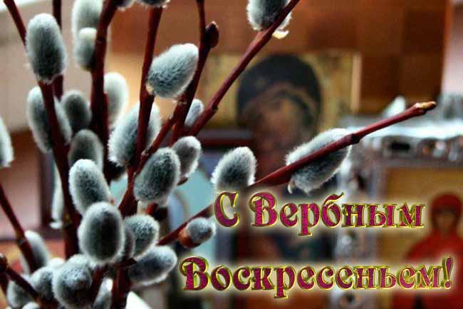 Вербное Воскресение: приметы, обычаи, традиции