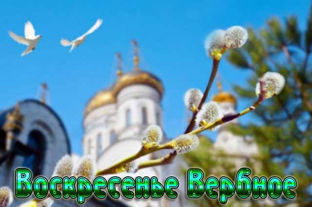 Картинки на Праздник Вербное Воскресенье