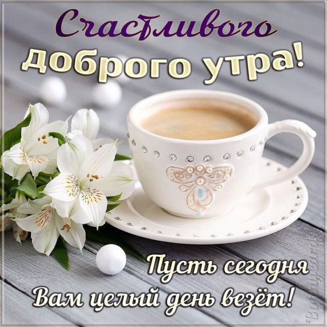 Картинки доброго утра, хорошего дня скачать