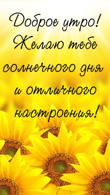 С добрым утром и хорошего дня и настроения