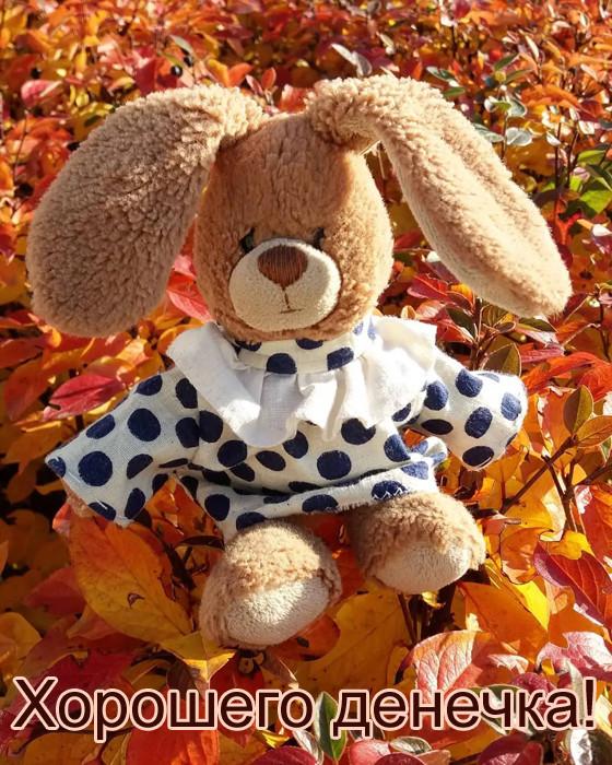 Осенняя картинка Хорошего дня